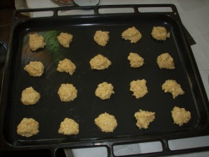 galletitas avena y coco