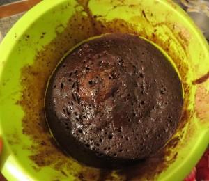 torta-micro-tefa-1